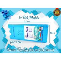 ice pack/icepack bag/gel blue/cooler/maslaha/pendingin ac/blue gel