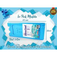 Blue Gel Ice Pack - Ice pack - Pendingin ac - Cooler ice - Air Cooler