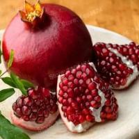kw1 biji benih buah delima bonsai import - 100 biji benih unggulan!