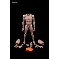 Figure 1/6 hottoys hot toys pichen male body Man model