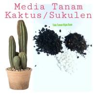 Media tanam khusus untuk Pohon Kaktus Atau Tanaman Sukulen