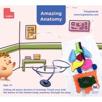 Mainan Edukasi Anak - Amazing Anatomy