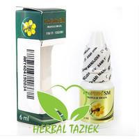 Obat Herbal Batu Ginjal - Propolis Brazilian