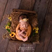 Set of 3 - Woodsy BambiniProps Newborn Photography Backdrop