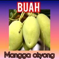 Buah Mangga Okyong 1 kg