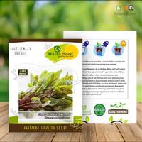 Benih Bibit Sorrel Red Veined (Haira Seed) Premium Quality Seed