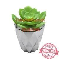 Tanaman Artifisial Succulent Dengan Pot / tanaman artifical