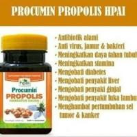 Supplement Procumin Propolis HNI HPAI ASLI