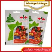 Benih Tomat Penah Merah Marta F1