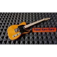 Katalog Gitar Fender Telecaster Katalog.or.id