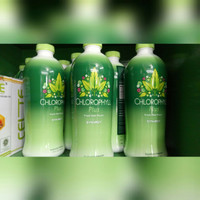 Klorofil Synergi Chlorophyll Plus Synergy