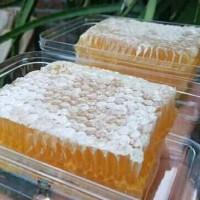 Madu Sarang - Raw Honey 500 Gram