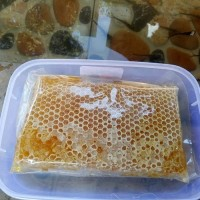 Madu Sarang - Comb Honey - Raw Honey 500 Gram