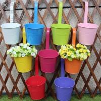 Pot Kaleng Gantung Vas Bunga Gantung Tanaman Hias Colorfull