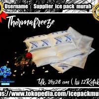 Thermafreeze Malang-Thermafreeze Pengganti Dry Ice-Pendingin Ice