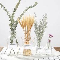 Scandinavian Vase Transparent ( Vas Minimalis untuk dekorasi) - S wide neck