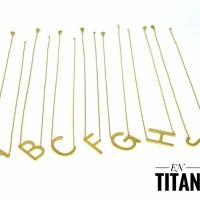Titanium kalung lapis emas 24k 842a