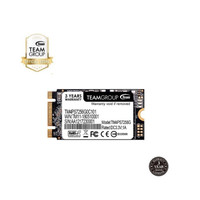 TEAMGROUP SSD M2 Sata 2242 256GB MS30
