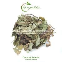 Rempahku - Daun JATI BELANDA 1kg Teh Diet Herbal Kurus Slimming Tea