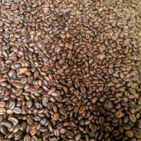 10kg roastedbean kopi sangrai robusta lampung grosir kopi asli 100%