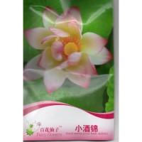 (4 Biji) Bunga Lotus Teratai Blossom (B0215)