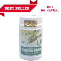 obat herbal khasiat ampuh berkualitas kapsul patikan kebo original