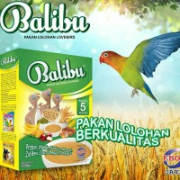 BALIBU PAKAN LOLOH LOVEBIRD DIBAWAH 5 BULAN