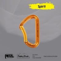 Carabiner Snap Spirit Petzl bent gate versions