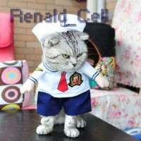 Baju Kucing Cat Funny Halloween Cosplay Size M White