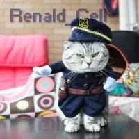 Baju Kucing Cat Funny Halloween Cosplay Size M Black