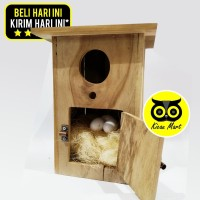 GLODOK GELODOK KAYU JATI SARANG TEMPAT TERNAK BREEDING BURUNG LOVEBIRD