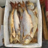 ikan Asin kuro es qualitas export 500gr