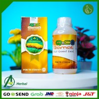 NEW Obat Herbal Bronkitis, Sesak Nafas, Paru Paru Basah, TB