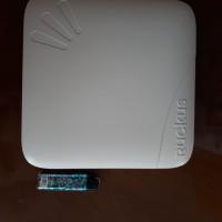 Ruckus Zoneflex 7982 access point-bukan aruba linksys cisco cambium