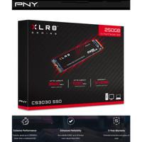 Usb flashdisk XLR8 CS3030 M.2 2280 NVMe Gen3x4 SSD 250GB