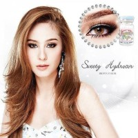 Softlens SWEETY SOLOTICA HYDROCOR BROWN Softlens Minus Normal Murah