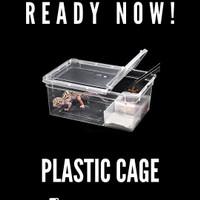 enclouser /box/wadah/ kandang/ kotak untuk serangga/reptile/gecko