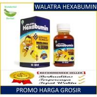 Walatra Hexabumin - ALBUMIN Madu Anak Asli 100% Original, Halal & BPOM