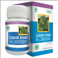 Kapsul Cakar Ayam Original Obat Herbal Multi Khasiat
