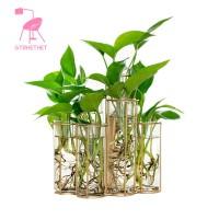 Modern Tube Shape Glass Vase Bottle For Flower Plant Glass