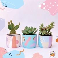 Paket bundle Pot & Kaktus Mini Tube Terracotta Pastel Series