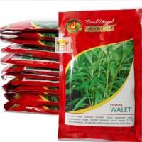 benih bibit kangkung WALET produk jawara