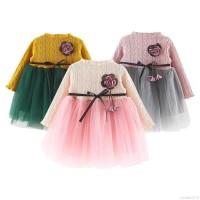Dress Princess Bayi Perempuan Lengan Panjang Motif Bunga untuk Musim