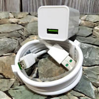 Oppo Charger Original
