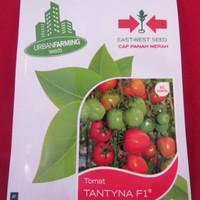 Benih Tomat TANTYNA F1( UF ) Cap Panah Merah