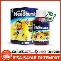 Walatra Hexabumin 100% Ekstrak Madu & Albumin - With Nano Technology