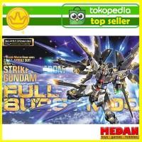 Bandai Gundam MG 1/100 Strike Freedom Full Burst ORI Gunpla Model Kit
