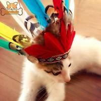 Topi Kostum Cosplay Bentuk Bulu Indian untuk Anjing / Kucing