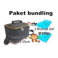 Paket Cooler Bag (Include 2 pack Ice Gel @250gr) Tas ASI - Medium