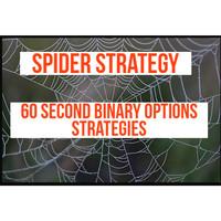 Spider strategy Indikator Binary Option